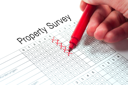 real estate property survey